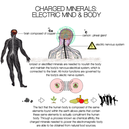 charged minerals electric brain mind and body