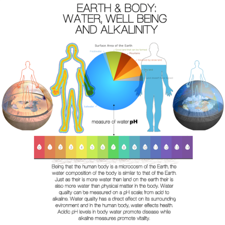 water and body alkalinity